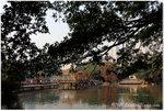 aIMG_4360 (荔灣園)