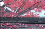 2002-Kyoto-016