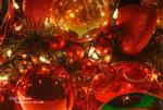DSC_0010_R_christmas_word