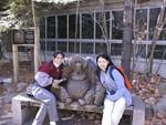 12 gorilla