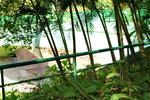23112013_Taipo Mui Shue Hang Snapshots00003