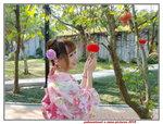 26012019_Samsung Smartphone Galaxy S7 Edge_Taipo Waterfront Park_Paksuetsuet Ng00005