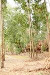 27012019_Nan Sang Wai Snapshots00002