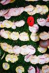 21032008_Flower Show00012