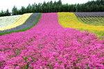 28072008_Hokkaido_