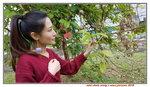 08122018_Samsung Smartphone Galaxy S7 Edge_Sunny Bay_Mini Chole Wong00018