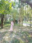 26012019_Samsung Smartphone Galaxy S7 Edge_Taipo Waterfront Park_Paksuetsuet Ng00015