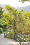 29032012_Tung Chung towards Tai O Village00009