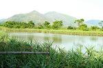 02062013_Yuen Long Nan Sang Wai Snapshots00002