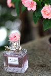 IMG_6293-Dior-aa