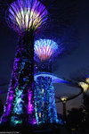 IMG_5112-Singapore-aa
