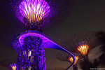 IMG_5133-Singapore-aa