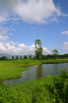 IMG_2291_a