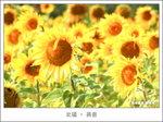 IMG_8921dppsmall