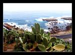view overlooking nichinan kaigan coast 日南海岸