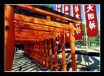 kumamoto suizenji park  水前寺公園
