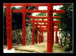udo-jingu shrine 鵜戶神宮