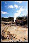 pohutu geyser at whakarewarewa  (File0341svc)