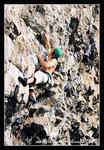 0205 climbing012c