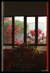 ���q�t���� ����x��t�C ��The Window Of Temple. Chinese Garden Series