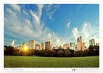 sheep-meadow02