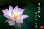 lotus_cover
