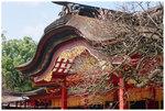 �Ӯ_����満�c - �֩� Dazaifu Tenmangu Shrine - Fukuoka