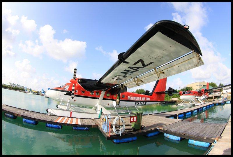 Maldives (Paradise in the world) IMG_4360