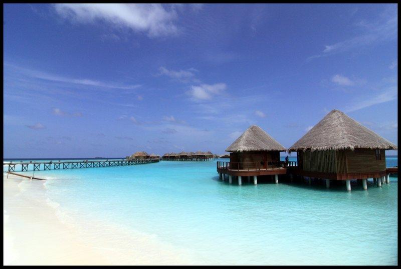 Maldives (Paradise in the world) IMG_4554