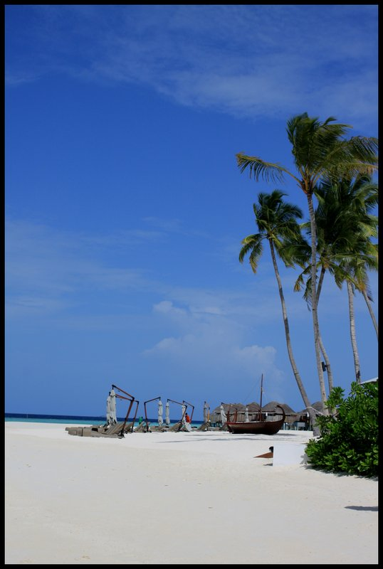 Maldives (Paradise in the world) IMG_4690