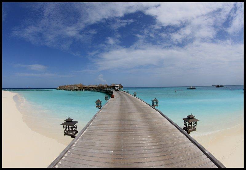 Maldives (Paradise in the world) IMG_4729