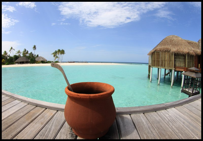 Maldives (Paradise in the world) IMG_4736