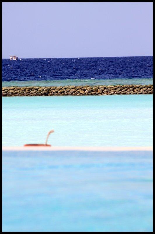 Maldives (Paradise in the world) IMG_5403