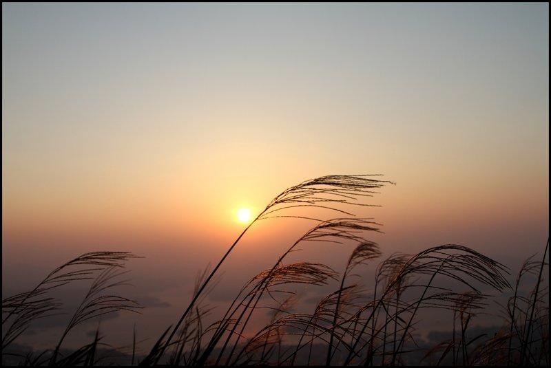 Star Trail & Sunrise IMG_0419