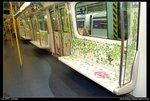 2007-07-01@Tai Po  artist train-D