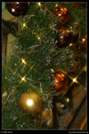 2008-12-18@X'mas decoration - 14 - PICT3688ex2