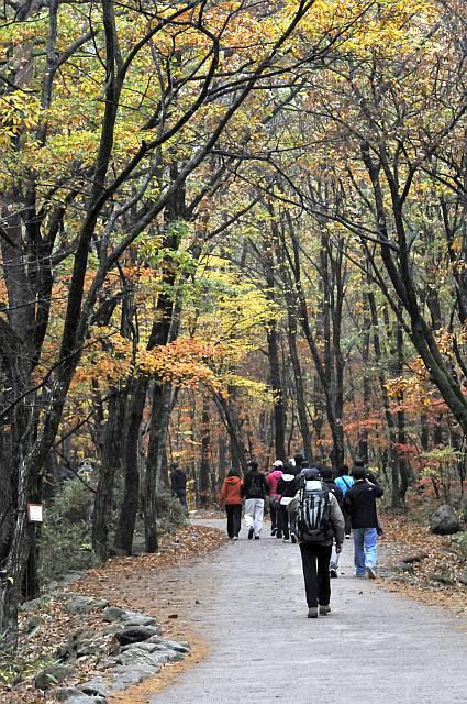 hiking in Seoraksan