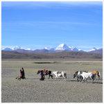 tibet c040_test