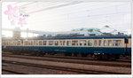 DSC96492
