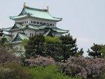 IMG_1878 名古屋城