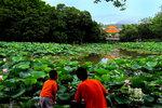 HongHu Park in ShenZhen