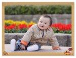 IMG_5190_crop_frame