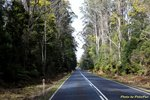 Heading to Cradle Mountain
