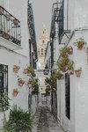 Calleja de las Flores (flower street)