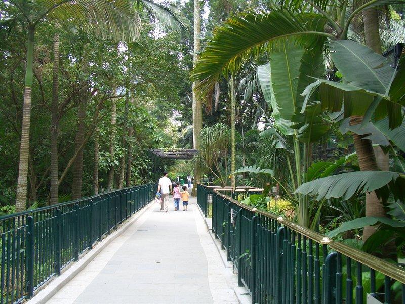 Cimg2228 Hong Kong Zoological And Botanical Gardens Hkzbg