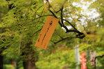 祈願 - 上野恩𧶽公園