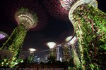 Garden by the bay @ Singapore