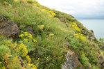 Sevan Lake, Armenia #sevan #Armenia DSC_0651a