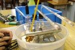 20130603-biologylab-10