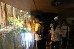 20140828-HK_Wetland_Park_01-10